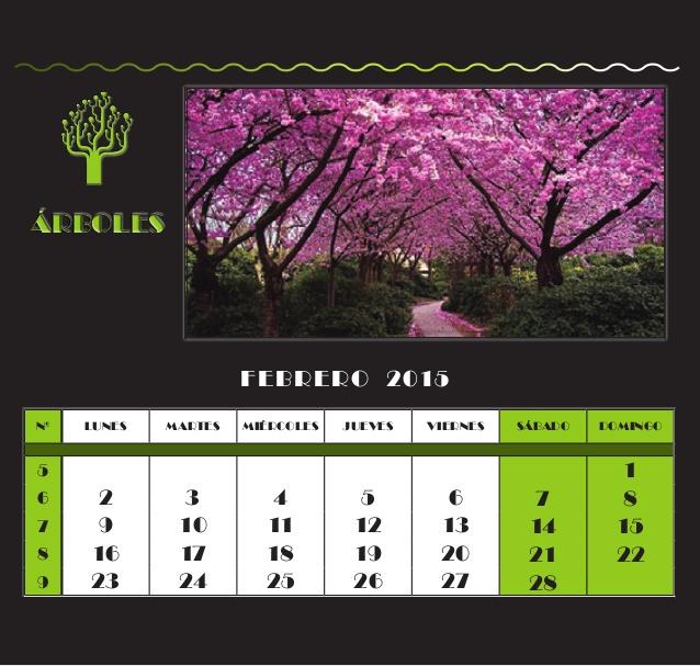 calendario-2015-rboles-3-638