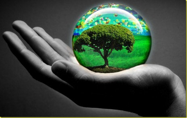 dia_mundial_proteccion_naturaleza