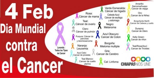 dm-cancer-2013-tipo-de-cancer