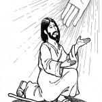 Todo imágenes de Sábado Santo – Un dia de tristeza y alegria