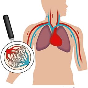 insercionsocial_hoy-celebramos-el-dia-mundial-de-la-hemofilia