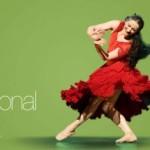 Espectaculos por el dia de la danza