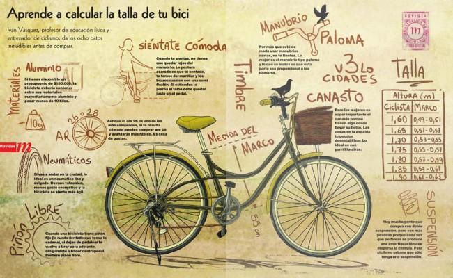 talla-bici-g
