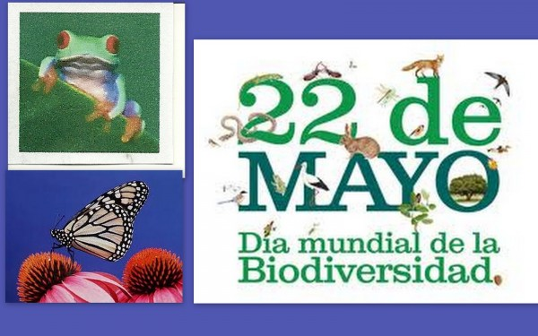 dia-de-la-biodiversidad