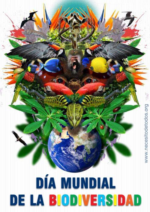 dia-mundial-biodiversidad-1