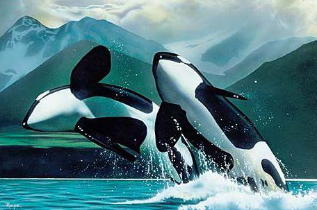 esta-orca