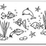 Imagenes postales del Dia de los Oceanos