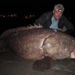 Bestias de Agua Dulce, peces gigantes