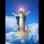 Cual es el dia de fiesta mas antiguo en lo que respecta a la Virgen?