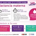 Semana Mundial de la Lactancia Materna – Infografías
