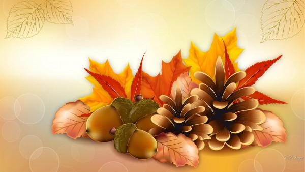 thanksgiving-fall-vector-wallpaper-537644c494ede