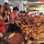 Un polémico festival en China, conocelo