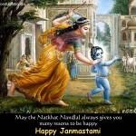 Quien fue Krishna y que lo caracteriza?