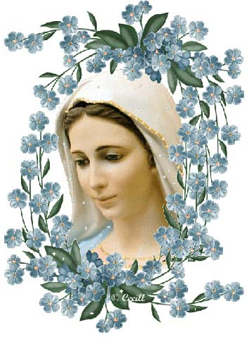 virgenflores