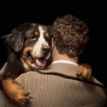 Día del Perro: Imágenes para WhatsApp