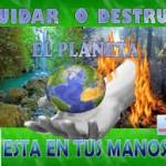 Postales informativas – Dia Mundial del Habitat