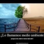 Imagenes y frases acerca de la naturaleza
