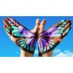 Mariposa: Logo del Dia para la Discriminacion Cero