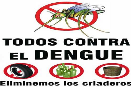 dengue.jpeg13