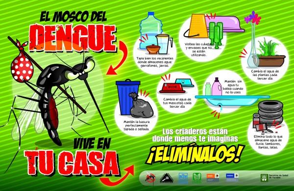 dengue.jpeg2