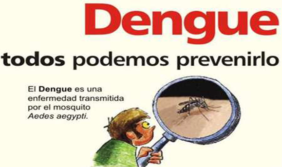 dengue30
