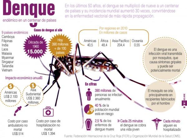 dengueinfo - copia
