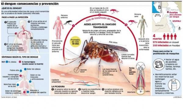 dengueinfo.jpg7