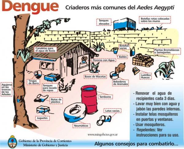 dengueinfo.jpg8