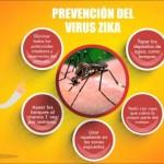 Lo que debemos saber del Virus Zika – Infografías