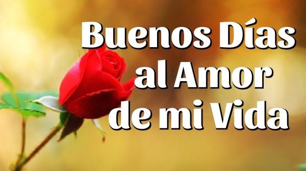 Memes chistosos e imágenes tiernas y bonitas para decir Buenos Días ...