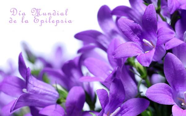 epilepsia.jpg6