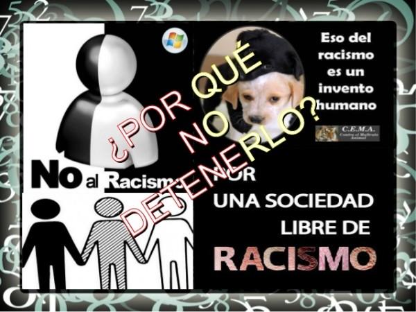 racismofrase16