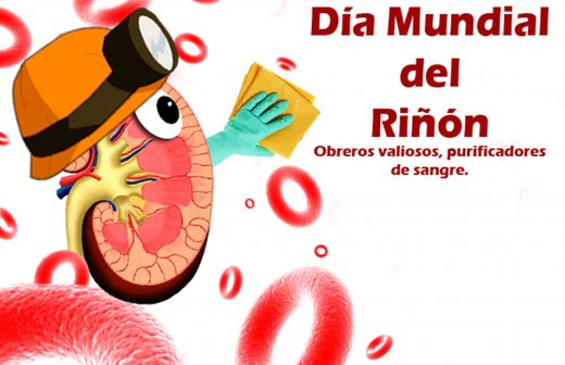 riñoncartel1