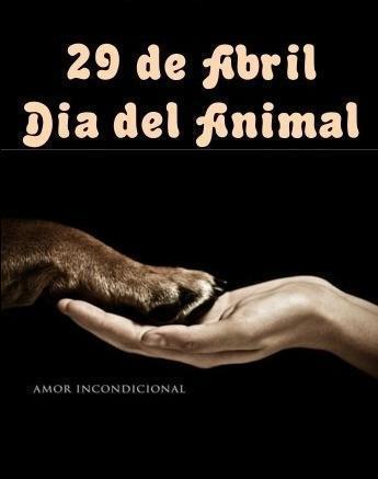 animalfeliz.jpg5