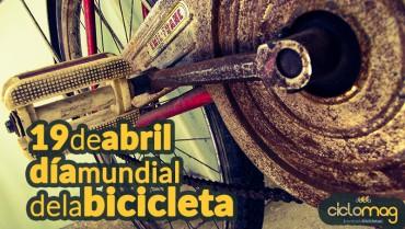 bici.jpg33