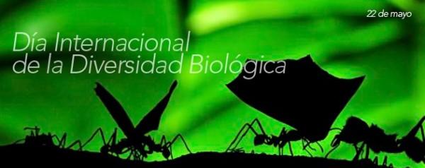 biodiversidad.jpe15
