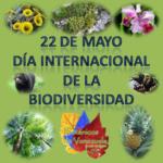 Día Internacional de la Biodiversidad o Diversidad Biológica – Imágenes para compartir