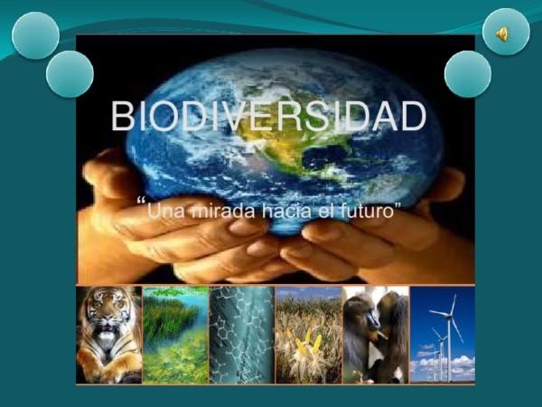 biodiversidadfrase.jpe10