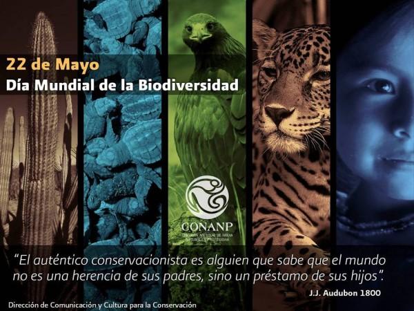 biodiversidadfrase.jpe2