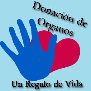 donacionorganos.jpg3