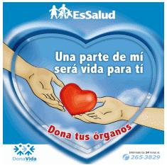 donacionorganosfrase.jpg1
