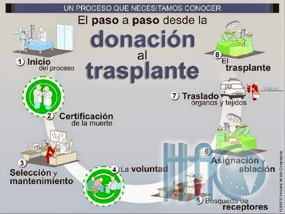donacionorganosinfo.jpg4