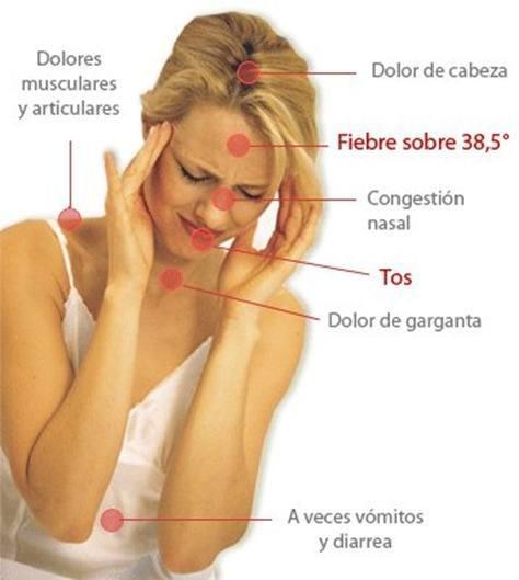 gripe.sintomasgif