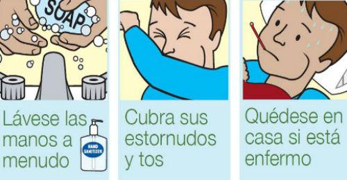 gripeinfoprecausciones