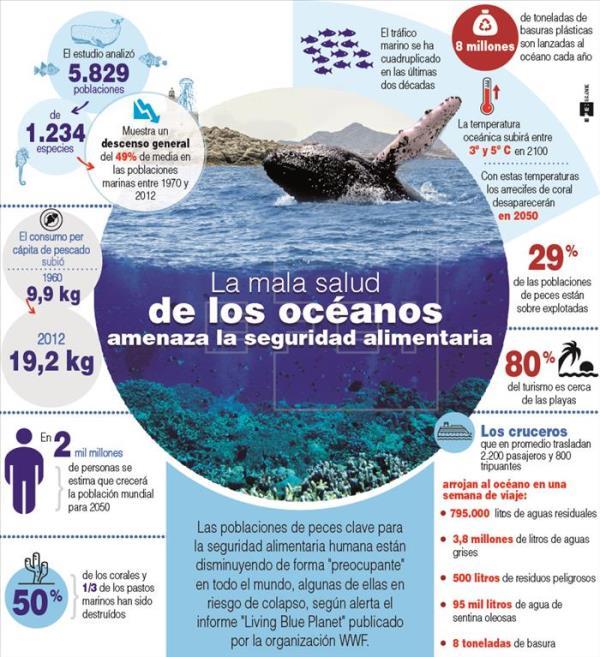 oceanosinfo.jpg1