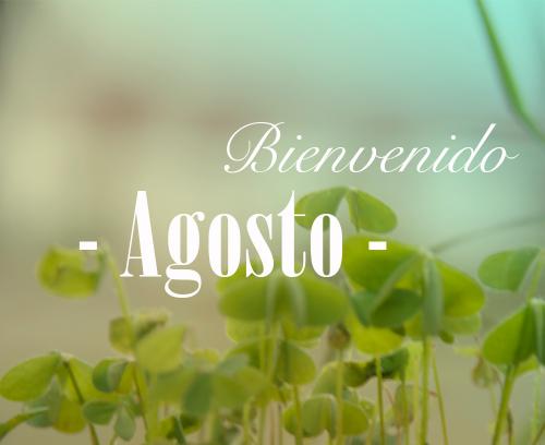 BienvenidoAgosto14