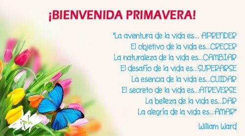 HolaPrimavera11