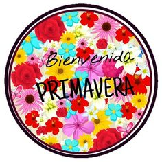 HolaPrimavera36