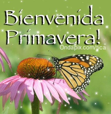 HolaPrimavera8