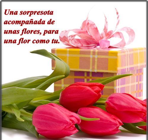bellasflores